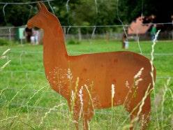 Edelrost Tiere der Tierpark Weeze Edition